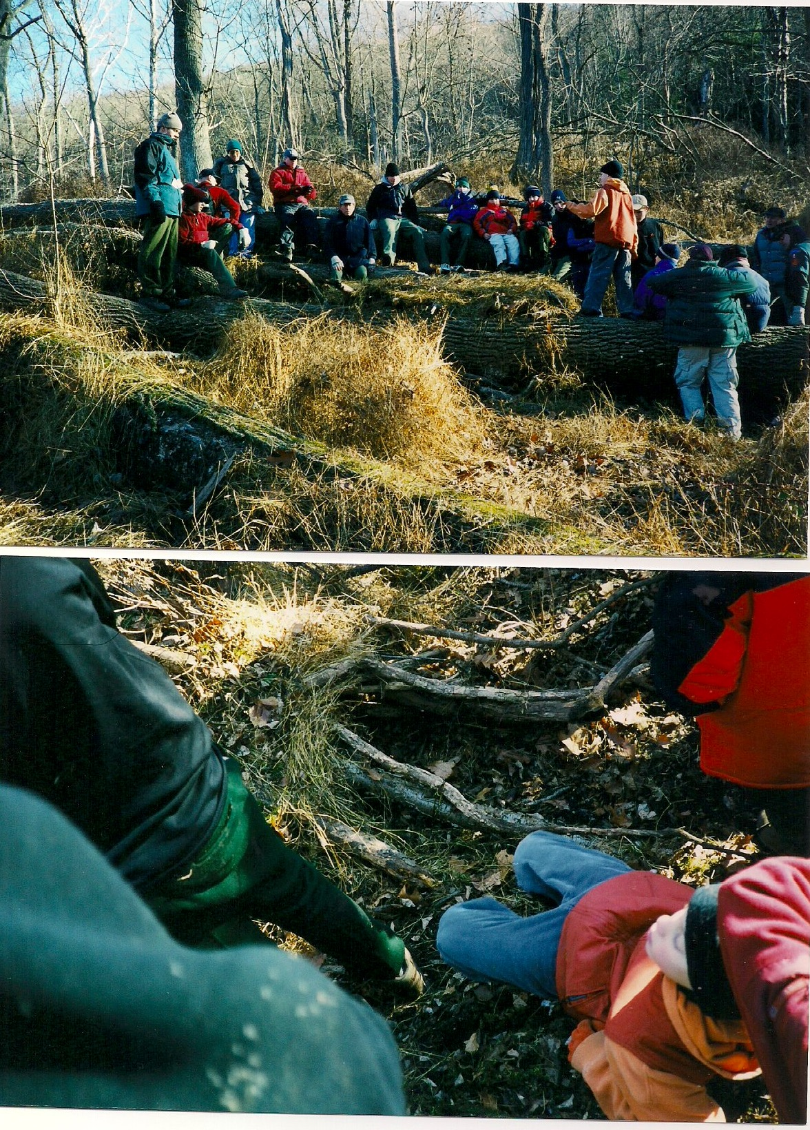 2000 - December - Worthington State Forest Campout